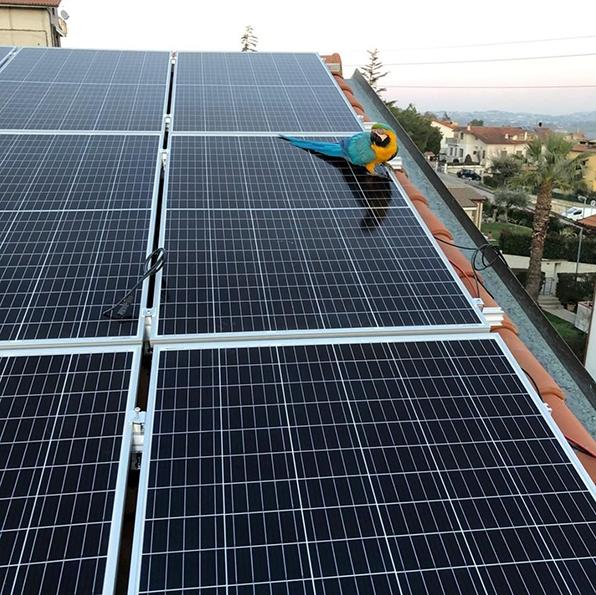 Tecta-fotovoltaico2